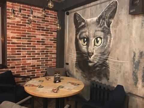 В Новом Южном объявилась «Кошка»