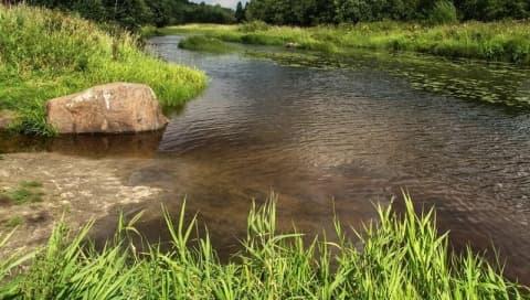 В реке Дитве найден труп