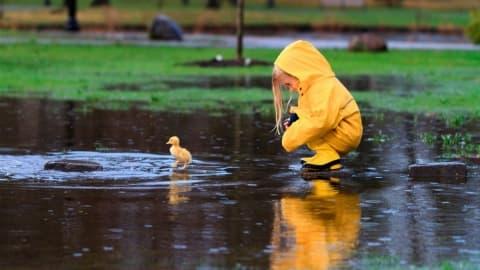 Погода в Лиде на текущей неделе