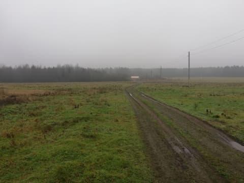 Зверское убийство под Тарново. Репортаж с места происшествия