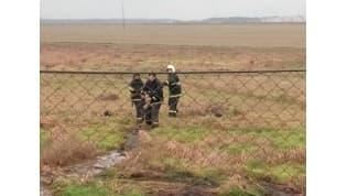 В Ивьевском районе спасатели вытянули из болота теленка и пытавшегося его спасти мужчину
