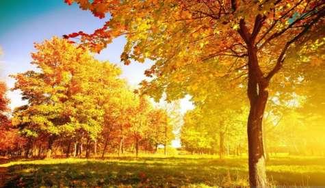 Золотая осень в Лиде. Лучшие снимки из Instagram