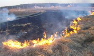 Лидские спасатели – о палах травы и их последствиях