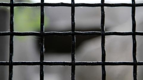 В Беларуси в 2 раза увеличены сроки административного ареста