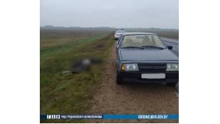 В Ивьевском районе ВАЗ насмерть сбил пешехода