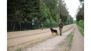 Гродненские пограничники за сутки задержали двух нарушителей госграницы