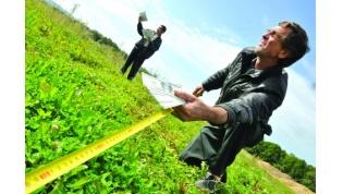 «Картофельная война» под Вороново: на одних сотках 2 разных хозяина посадили картошку 3 раза!